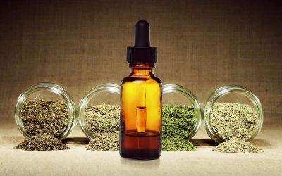 Cannabis Medicinal: los desafíos que se plantean para el futuro