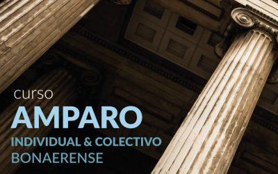 CURSO SOBRE AMPARO INDIVIDUAL Y COLECTIVO BONAERENSE